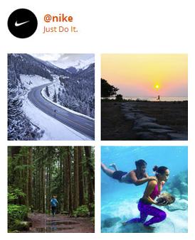 eDirectory Plugins de Redes Sociais - Instagram Plugin